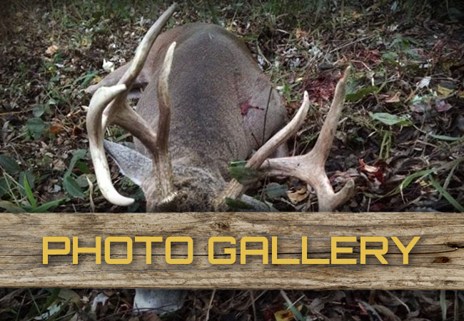 Blazn Guns Hunting Photo Galleries