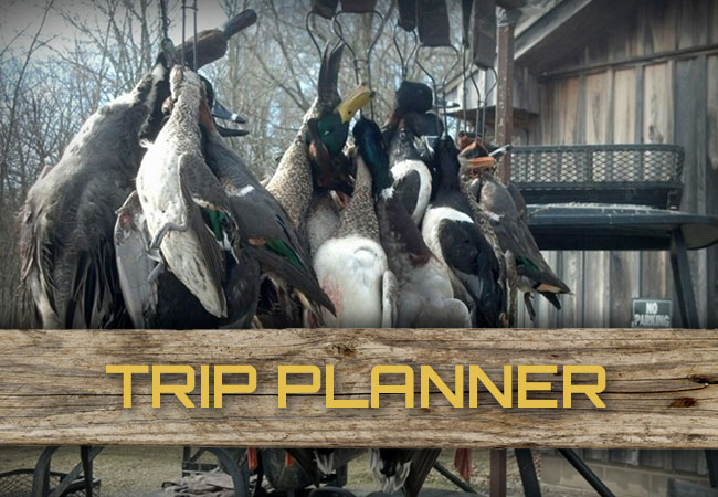 Plan a Trip with Blazn Guns Hunting